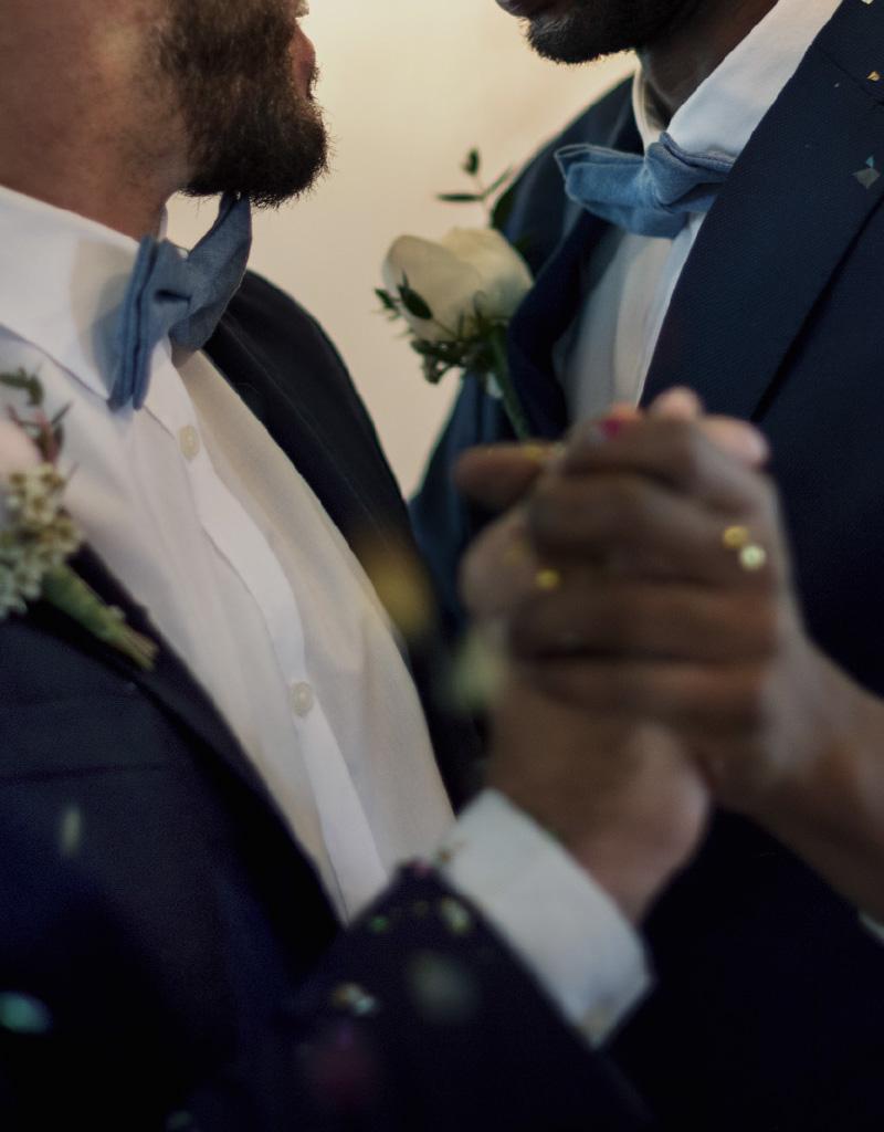 Wedding Gay